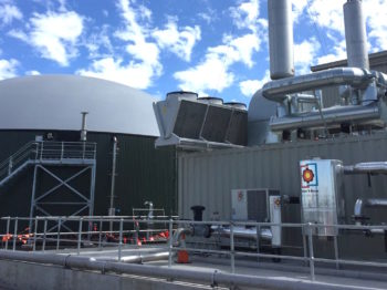 YVW Waste to Energy Facility Crop